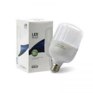 LED OCL Bulb 50W